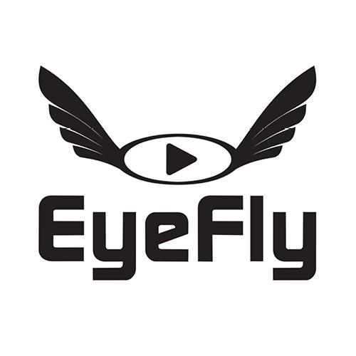 Eye-Fly